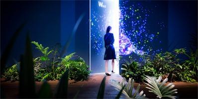 蜿蜒繁茂的梦幻丛林|DMM东京数位本部